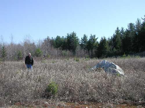 Reclaimed Using Warm Season Grass Mix (Sanbornton)